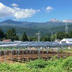 企業様・営農型太陽光発電所
